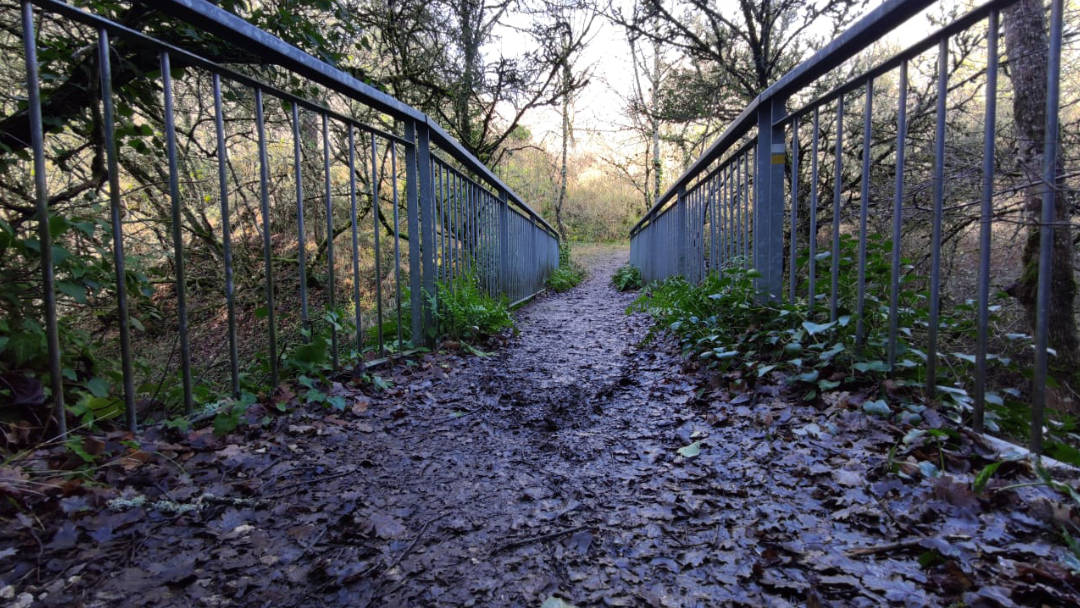 Artazcoz paseos por la naturaleza